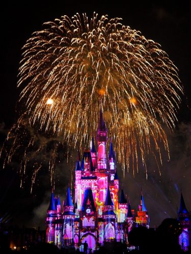 WDW Happily Ever After