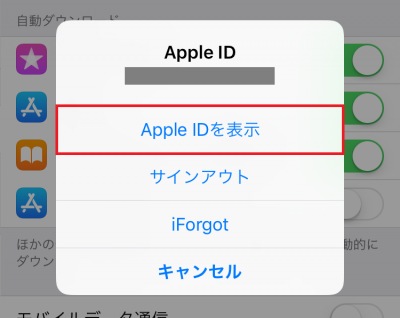 iPhone Apple ID