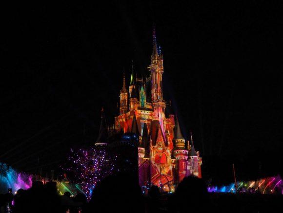 Celebrate! Tokyo Disneyland 全景