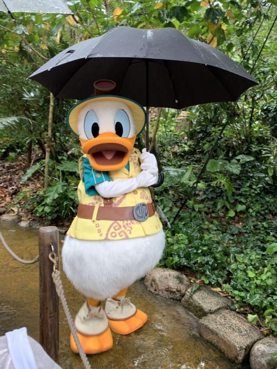 グリーティングトレイル 傘さしドナルド