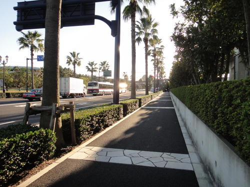 ディズニーシーまで徒歩の道のり_ディズニーシーへの直線道路
