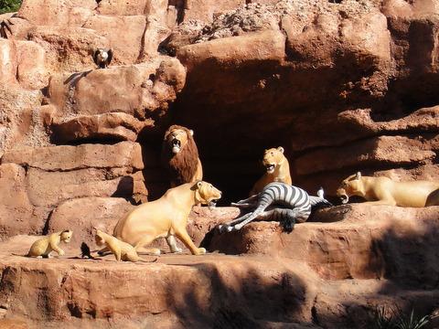 ジャングルクルーズ:ワイルドライフ・エクスペディション_ライオンとシマウマ